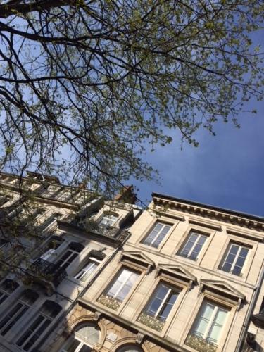 2018-04-18-arbre Place Pasteur.JPG