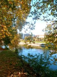 automne_2.jpg
