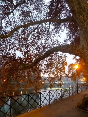 automne Bes.jpg